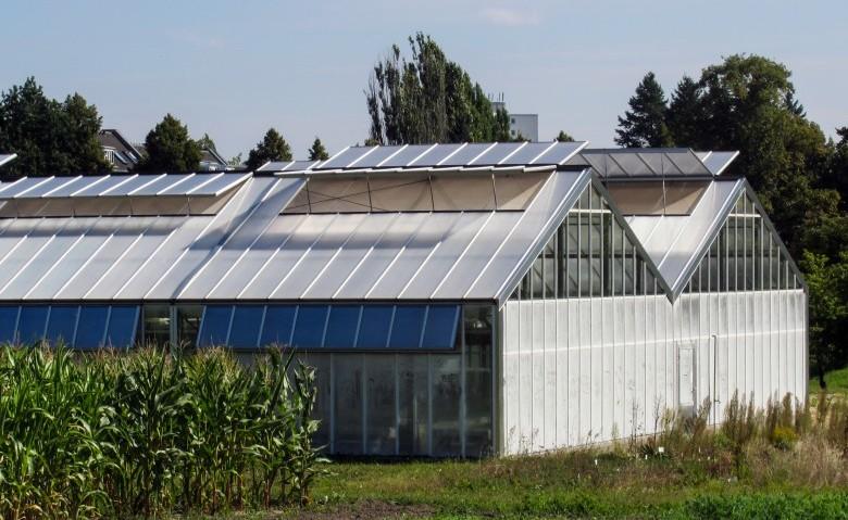 Come aprire un'azienda agricola in dieci mosse