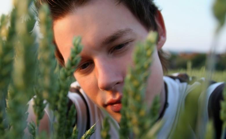 Perito agrario: sbocchi lavorativi - Giovani Impresa ...
