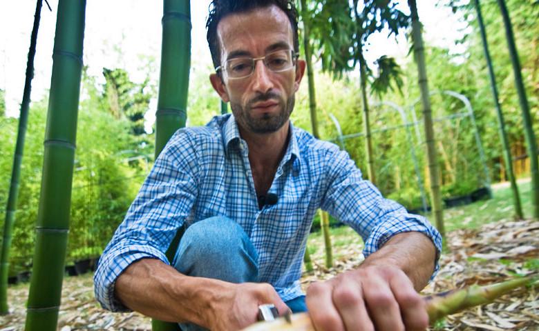 """Andrea Demagistris - Azienda agricola """"Essenza del bambù"""""""