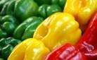 Vendita diretta - come allestire l'esposizione dei prodotti