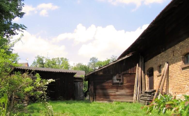 La prelazione agraria - acquisto terreni agricoli