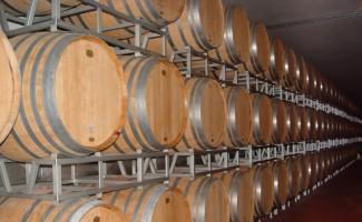 Boom vendite di vino e spumanti