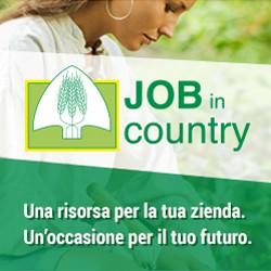 JobInCountry