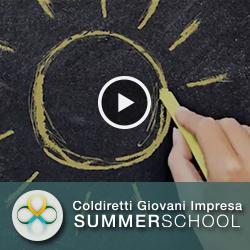 summer school video