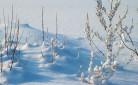 Neve nel Nord Italia