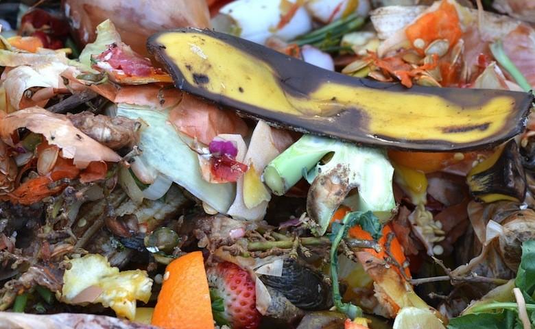Spreco alimentare: cibo non consumato, gettato nei rifiuti