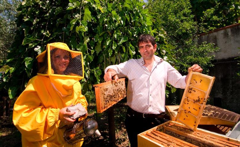 Azienda agricola apicoltura Ambrosino