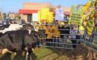 Gruppo di allevatori durante l'ultima mobilitazione in difesa del latte italiano