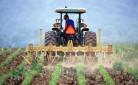 Bandi Psr, novità per i giovani imprenditori agricoli