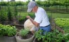 Imprenditore agricolo al lavoro nella propria azienda