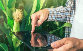 Settore agroalimentare digitale