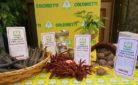 alcuni dei superfood della nonna censiti ed esposti dalla Coldiretti all'incontro Vacanze tra cibo e cultura