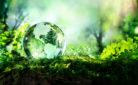 Immagine rappresentativa Giornata Mondiale Ambiente