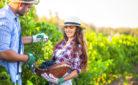 Giovane e lavoro in azienda: due viticoltori