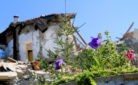 Terremoto e solidarietà: Amatrice colpita dal sisma