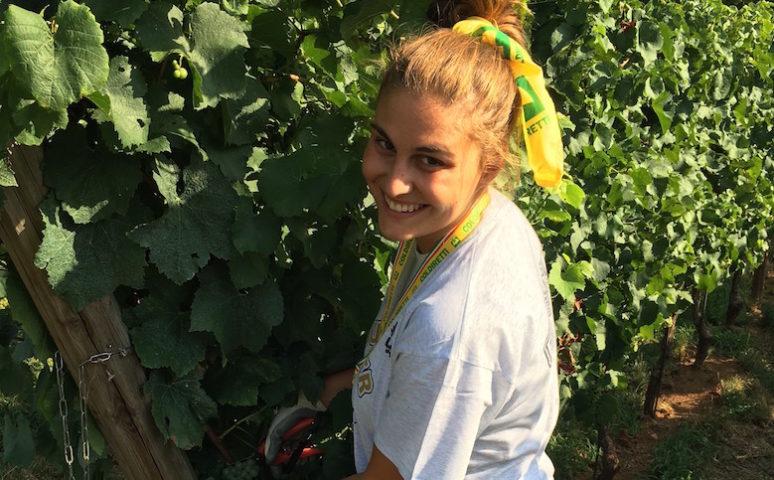 Agricoltura giovane