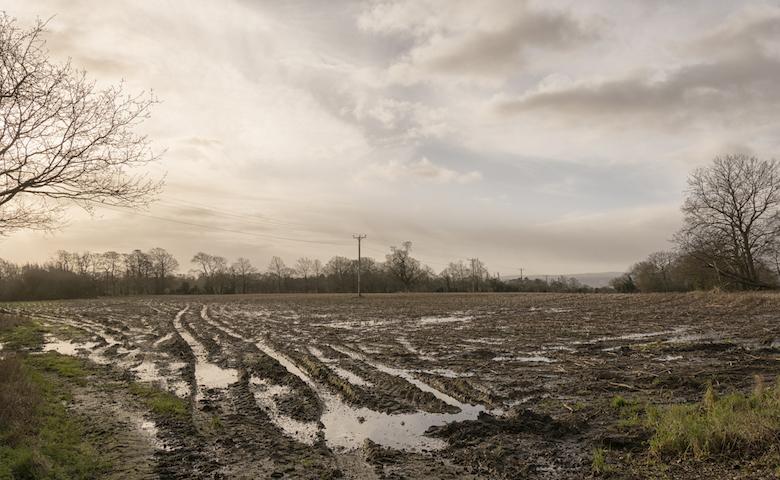 Campo agricolo alluvionato