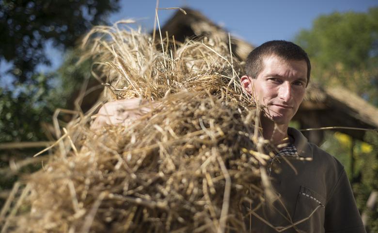 Accesso alla Terra, giovane agricoltore