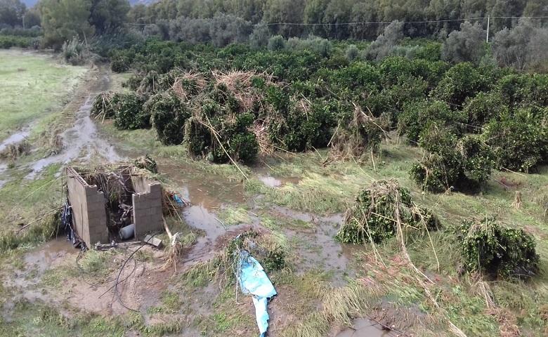 Agricoltura, danni causati dal maltempo