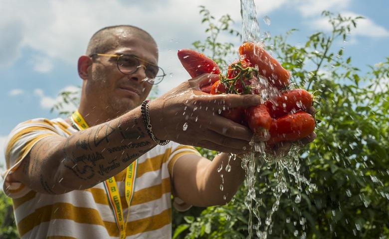 Lavoro giovani agricoltori