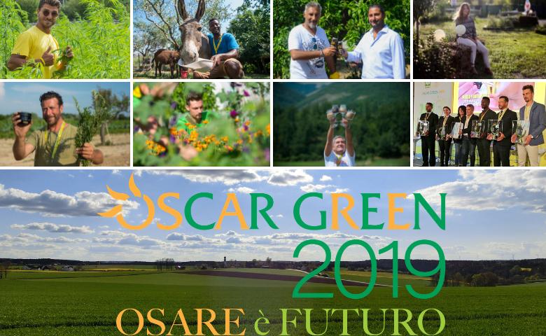 Oscar Green 2019